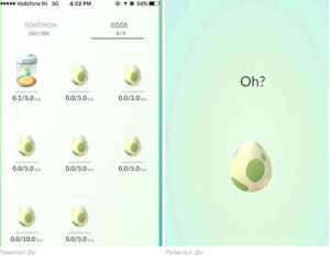 Twitter Is In Disbelief That An Indian Court Filed A Case Against Pokemon Go Because Of Eggs